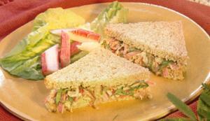 sanduiche kani